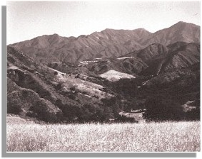 Starr Ranch Landscape