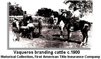 Vaqueros Branding Cattle c.1900